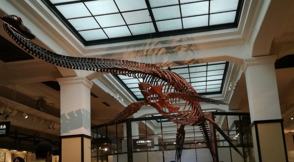 日本館の展示 首長竜